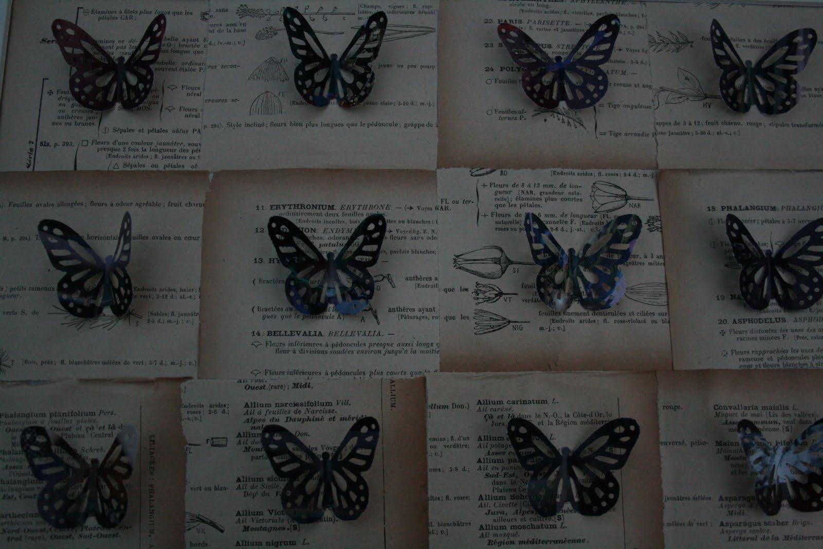 http://1.bp.blogspot.com/_T_iHPnt8nyg/TDYwu3KxELI/AAAAAAAACDY/MeW4_cytrm8/s1600/Kate+Kelleher+butterfly+cuts.jpg