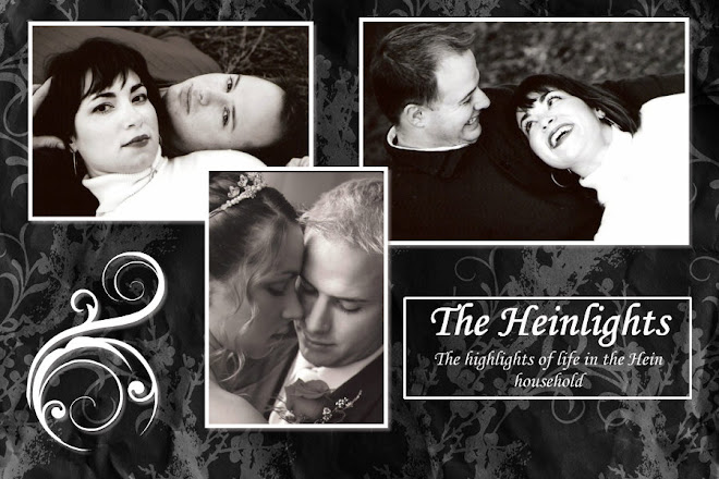 The Heinlights