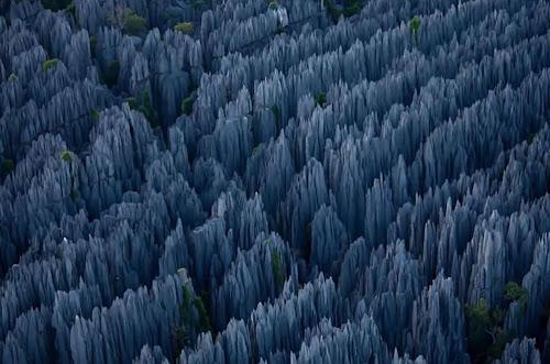 hutan batu madagaskar