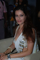 Payal Rohatgi Saree Photo Gallery