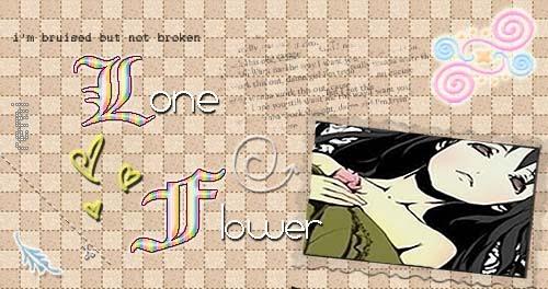 Lone flower  ~
