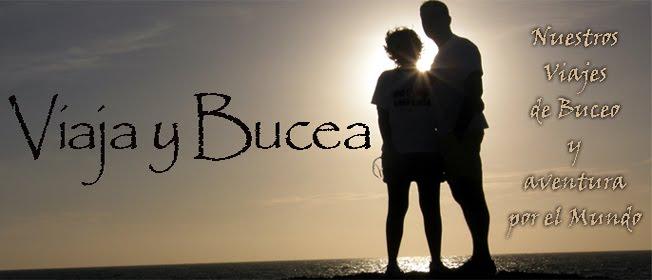 Viaja y Bucea...