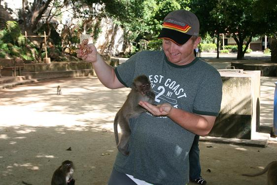 Monkeys!!!