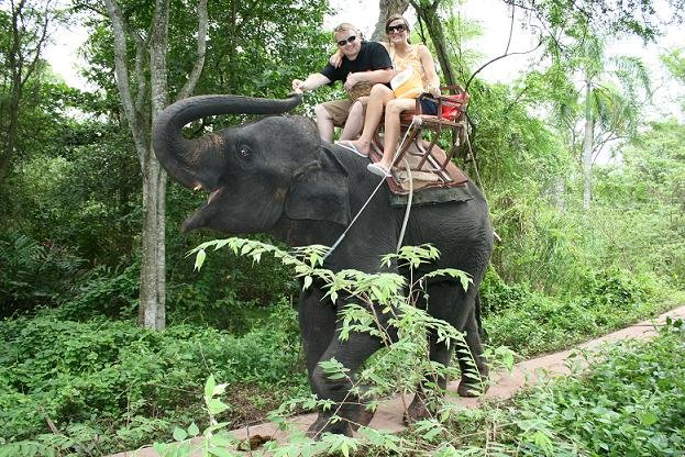 Riding Elephants in Thailand!!