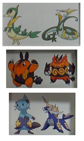 that are possibly the evolutions to the Black and White starters.