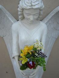 Die engel...