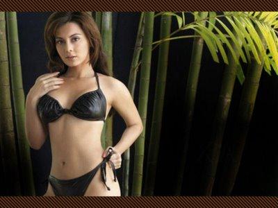 hot actress minissha lamba bikini photo gallery