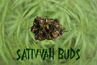 Sativvah_legal+bud.jpg