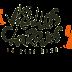 Muse Setlist y Fotos Carhaix, Vieilles Charrues festival (Francia)