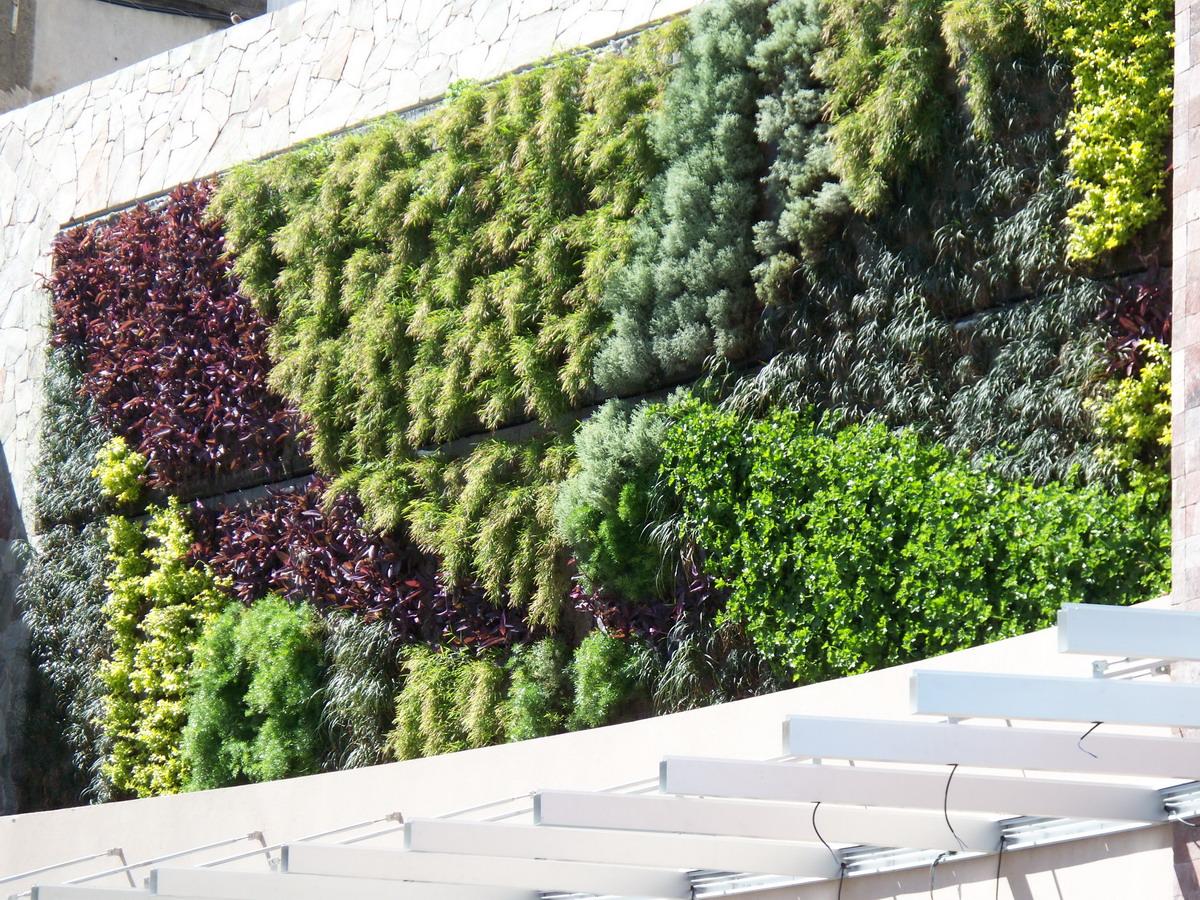 Jardin vertical en argentina for Jardin vertical mercadolibre
