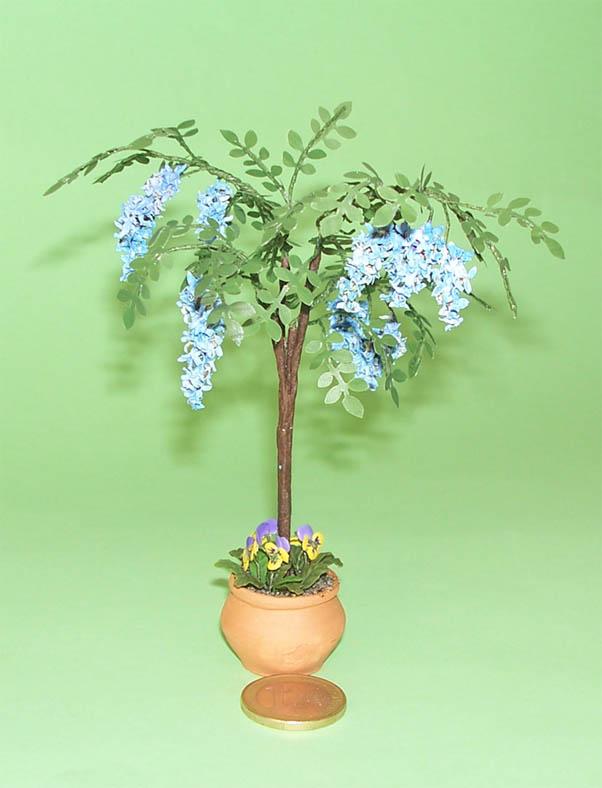 Plantas de exterior y jardines glicinia for Flores de jardin exterior