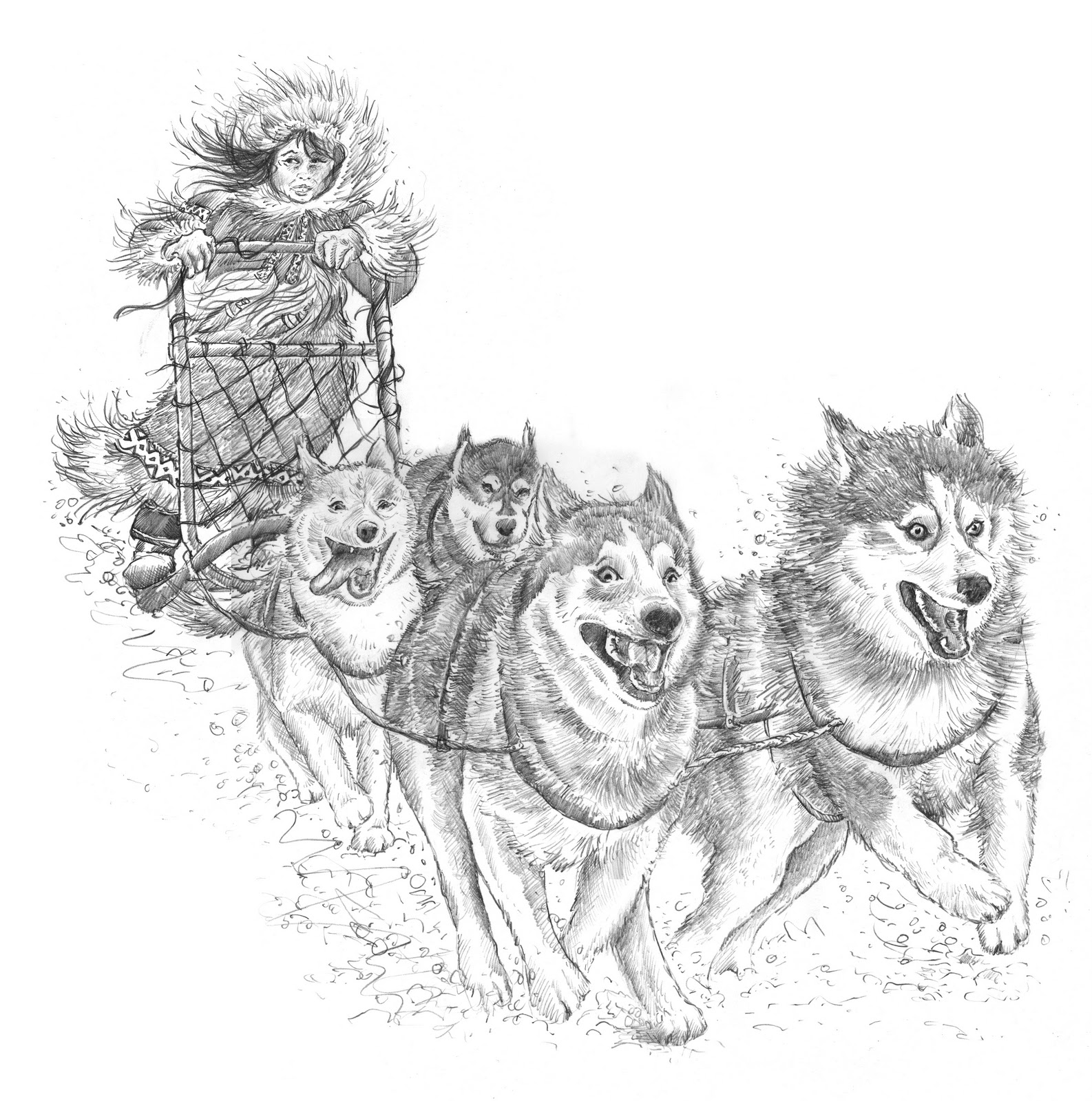 Pencil drawing dog sled sketch coloring page for Iditarod coloring pages