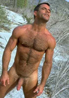 Hairy nude older men think, that