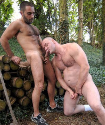 Edu Boxer Gay Hairy Stud