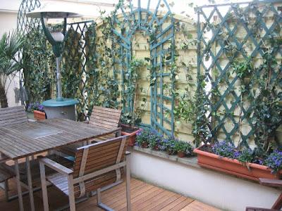 amenagement d 39 exterieur jardinier paysagiste corse paca paris bambous g ants palmiers. Black Bedroom Furniture Sets. Home Design Ideas