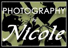 Need a photographer??