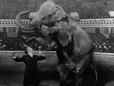 Houdini and Jennie, the elephant, performing at the Hippodrome, New York