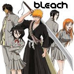 Bleach anime info