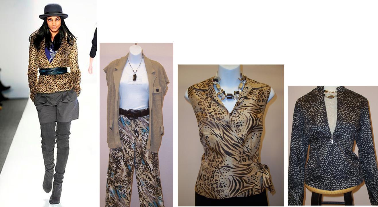 http://1.bp.blogspot.com/_TvgBuBTRBhc/TKoJByYNrGI/AAAAAAAAABY/r6ETZKWyJmo/s1600/CheetahMontage.jpg