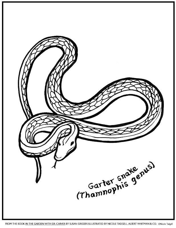 Coloring Pages for Dr. Carver title=