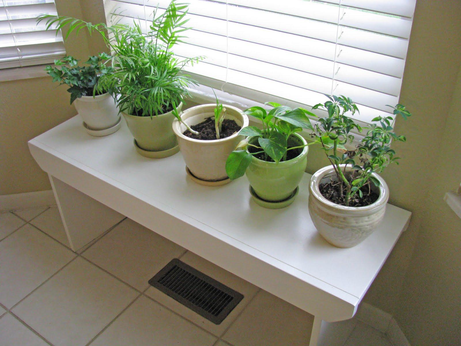 Delightful Dwelling A Custom Plant Bench