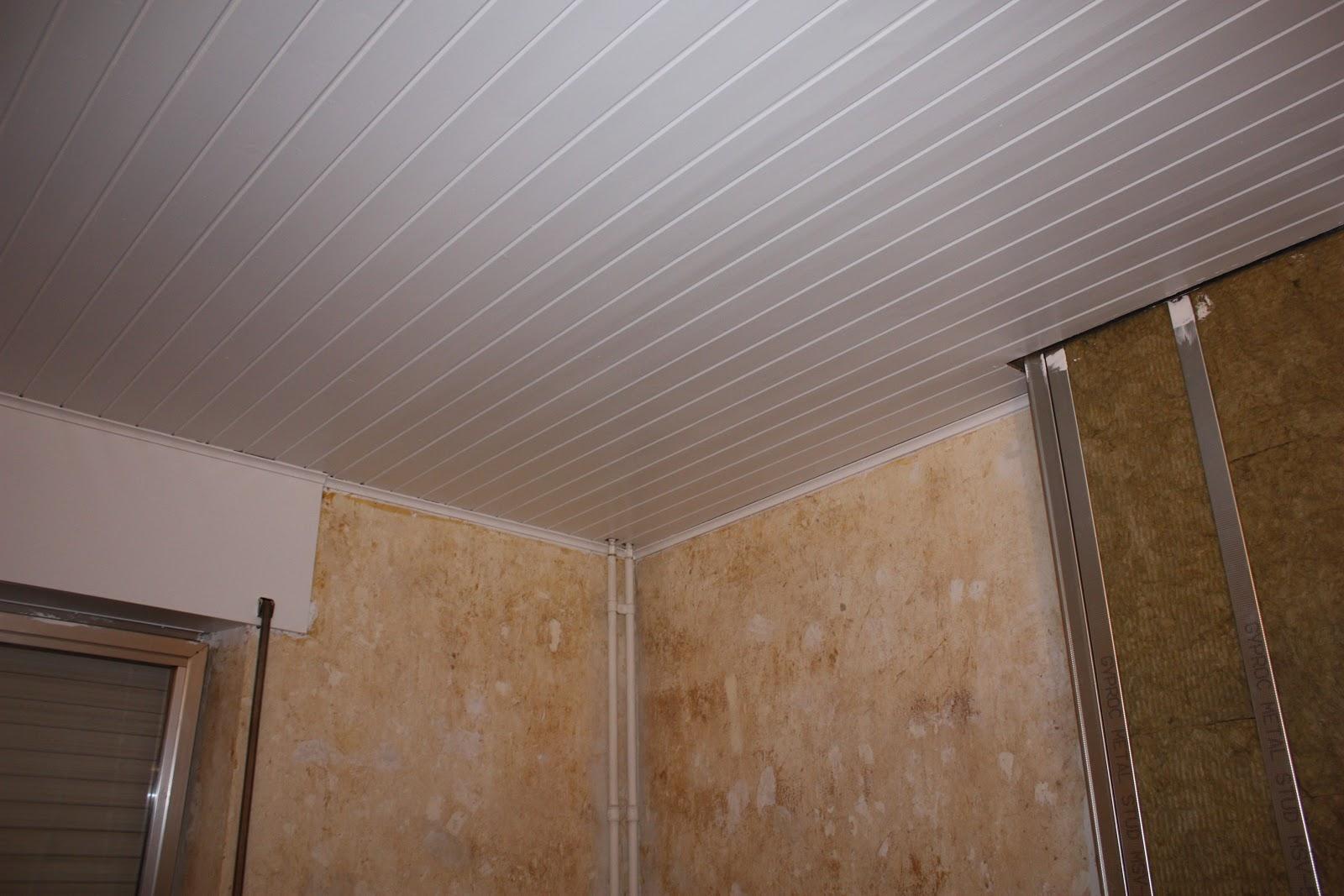 travaux dans ma maison peinture au plafond. Black Bedroom Furniture Sets. Home Design Ideas