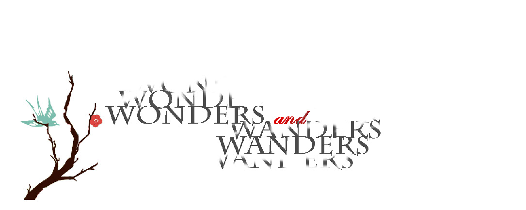 Wonders and Wanders