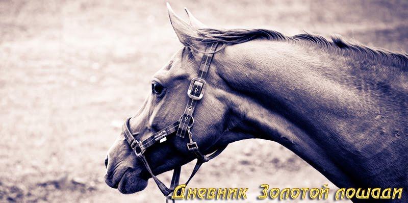 Дневник Золотой лошади