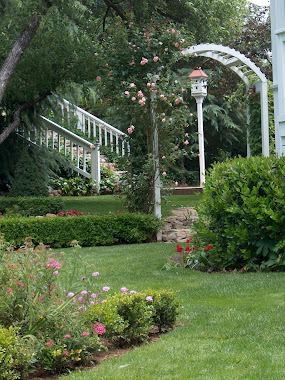 Arbor & Birdhouse