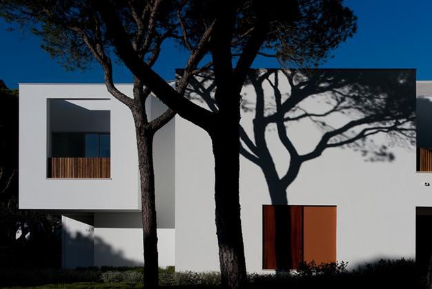 Sandra Oliveira - Design e Arquitectura de Interiores - Company