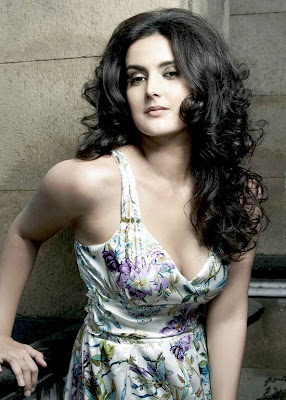 Tulip Joshi Latest and Cute Photos