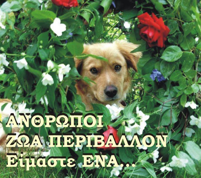 ΑΝΘΡΩΠΟΙ - ΖΩΑ - ΠΕΡΙΒΑΛΛΟΝ