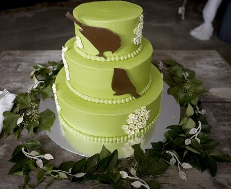 Lime green three tier wedding cake with two chocolate birds and small