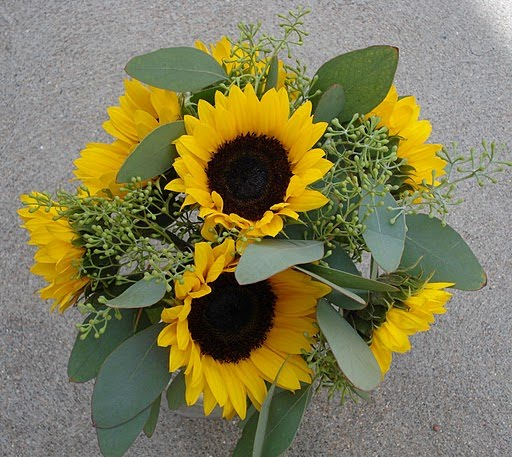 Sunflower wedding bouquet with seeded eucalyptus