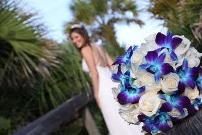 White Flower Picture on White Lilies And Dendrobium Orchids  The Blue Orchids In These Bridal