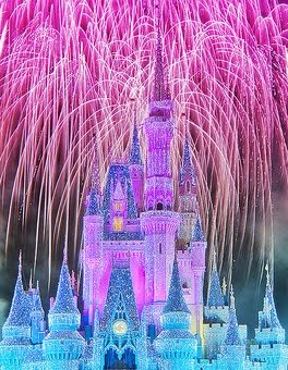 where dreams come true