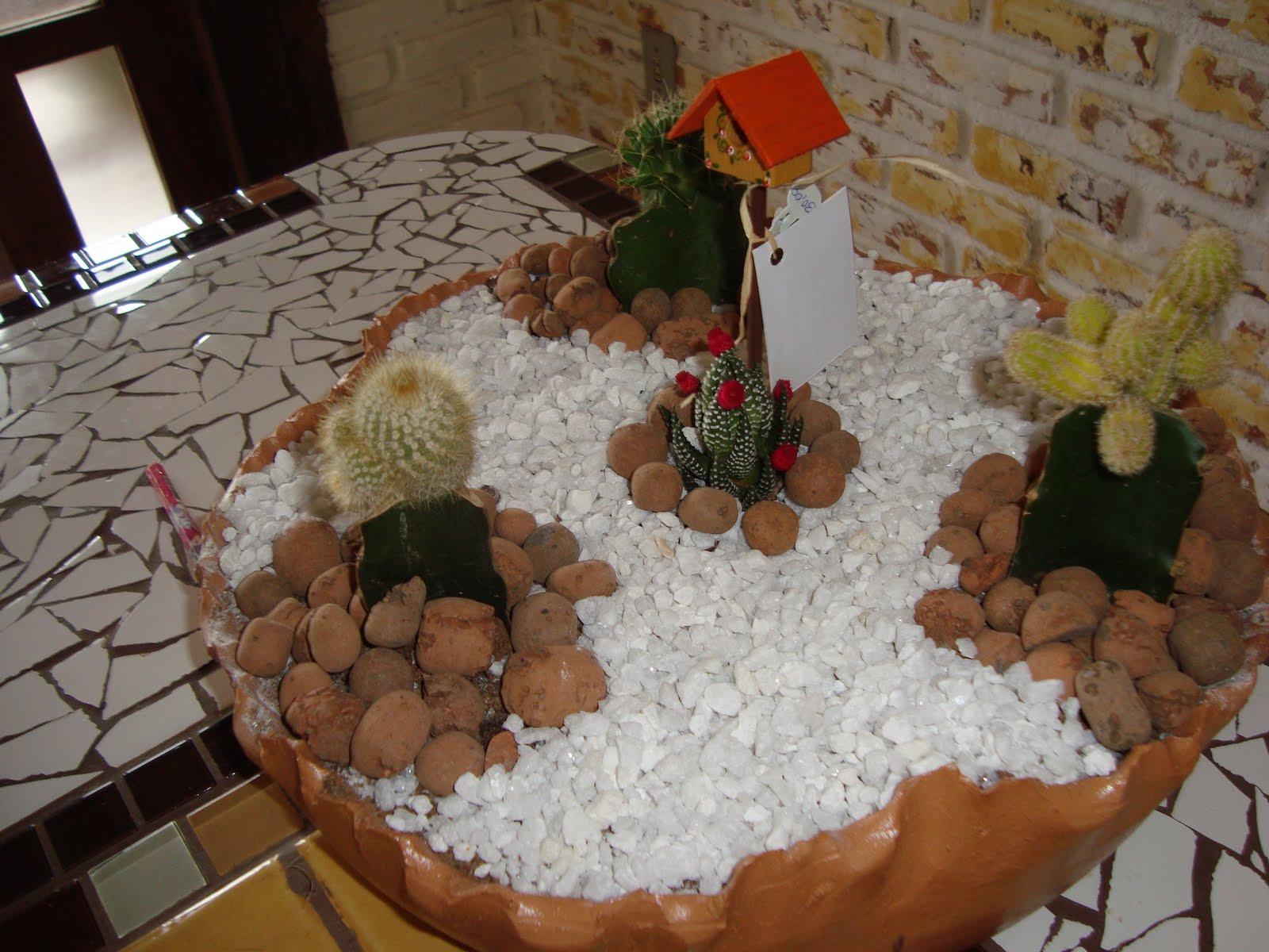 mini jardim reciclado:MINI JARDIM