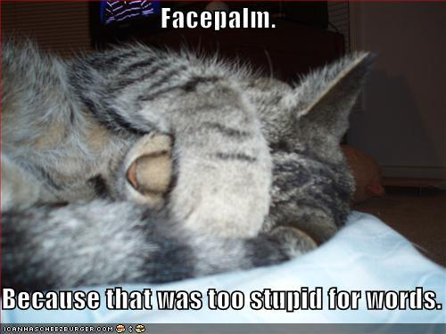 kitty face palm