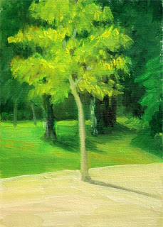 Young Walnut Tree by Liza Hirst