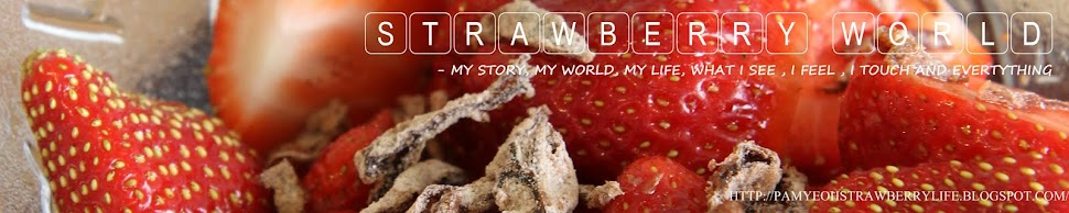 sTRAwBERRY .. mY LIFE.. MY wORLD- talks on gadget, Malaysia, food, travel, cross stich..