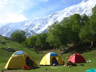 Everything About Campsites
