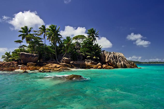 Qu 5 cosas te llevar as a una isla desierta mediavida for Radiadores 7 islas