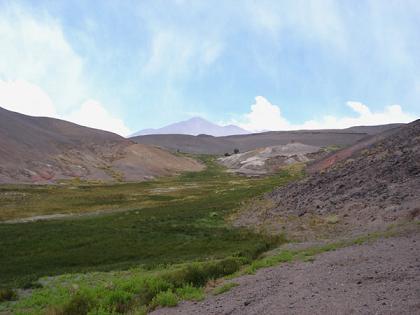 Vega Las Botijuelas, un oasis entre volcanes y salares
