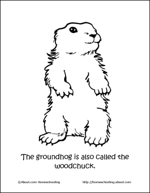 Groundhog coloring sheet