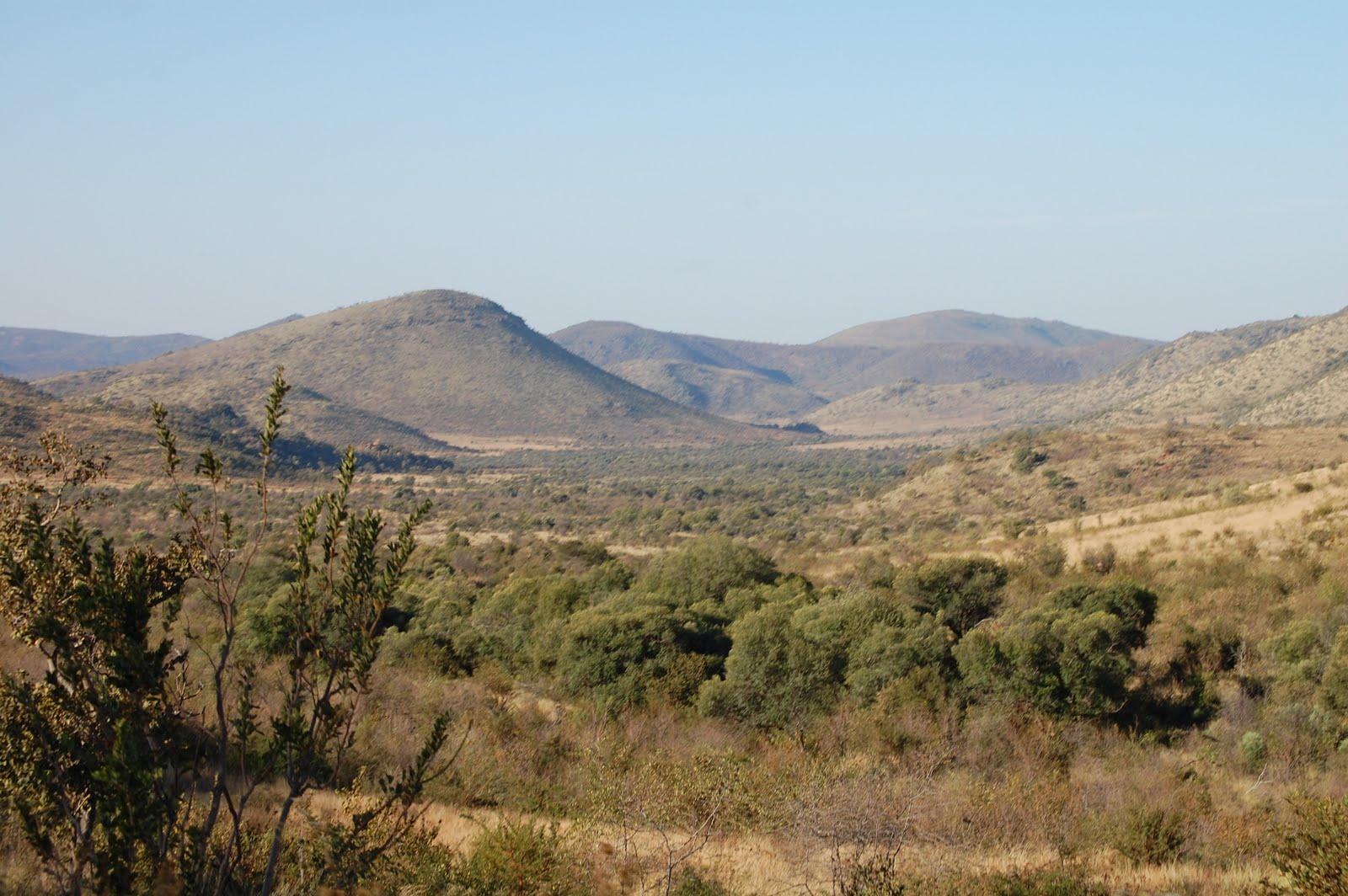 http://1.bp.blogspot.com/_U8fdjhQP8C4/TBiUZobQGOI/AAAAAAAABu0/TqVbZkdPj7U/s1600/savanna.JPG