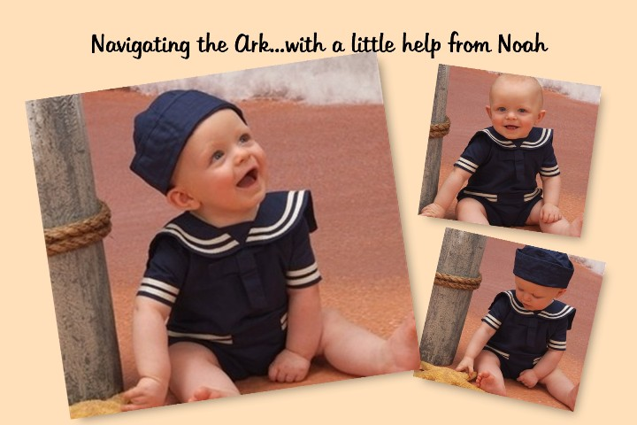 Navigating the Ark...with a little help from Noah