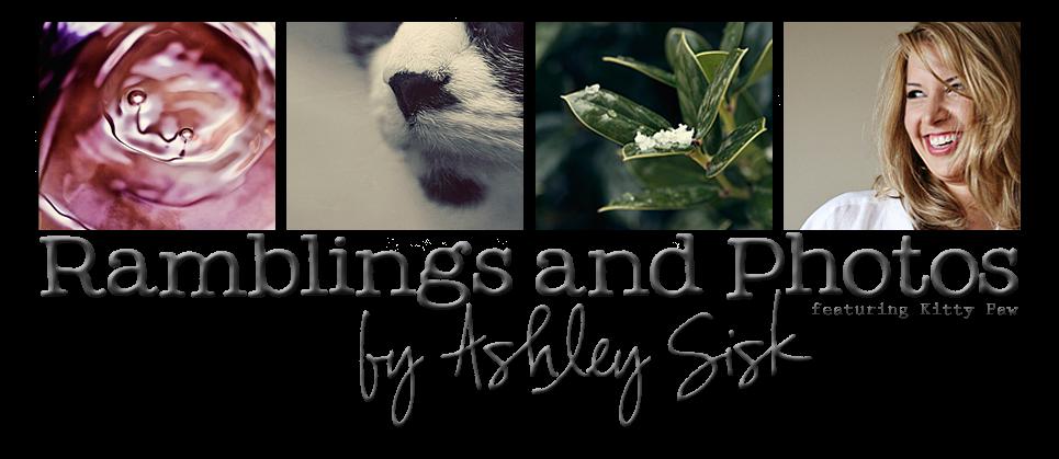Ramblings and Photos