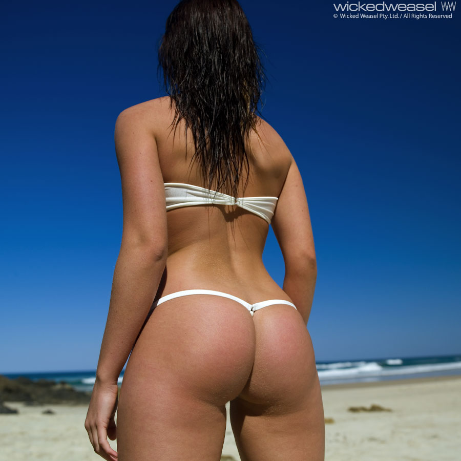 Wicked weasel pool party