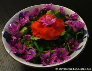 Salade de cresson, mauve et coquelicot