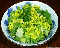 Moutarde et oseille en salade